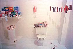 . Chicago, Menstruation bathroom .