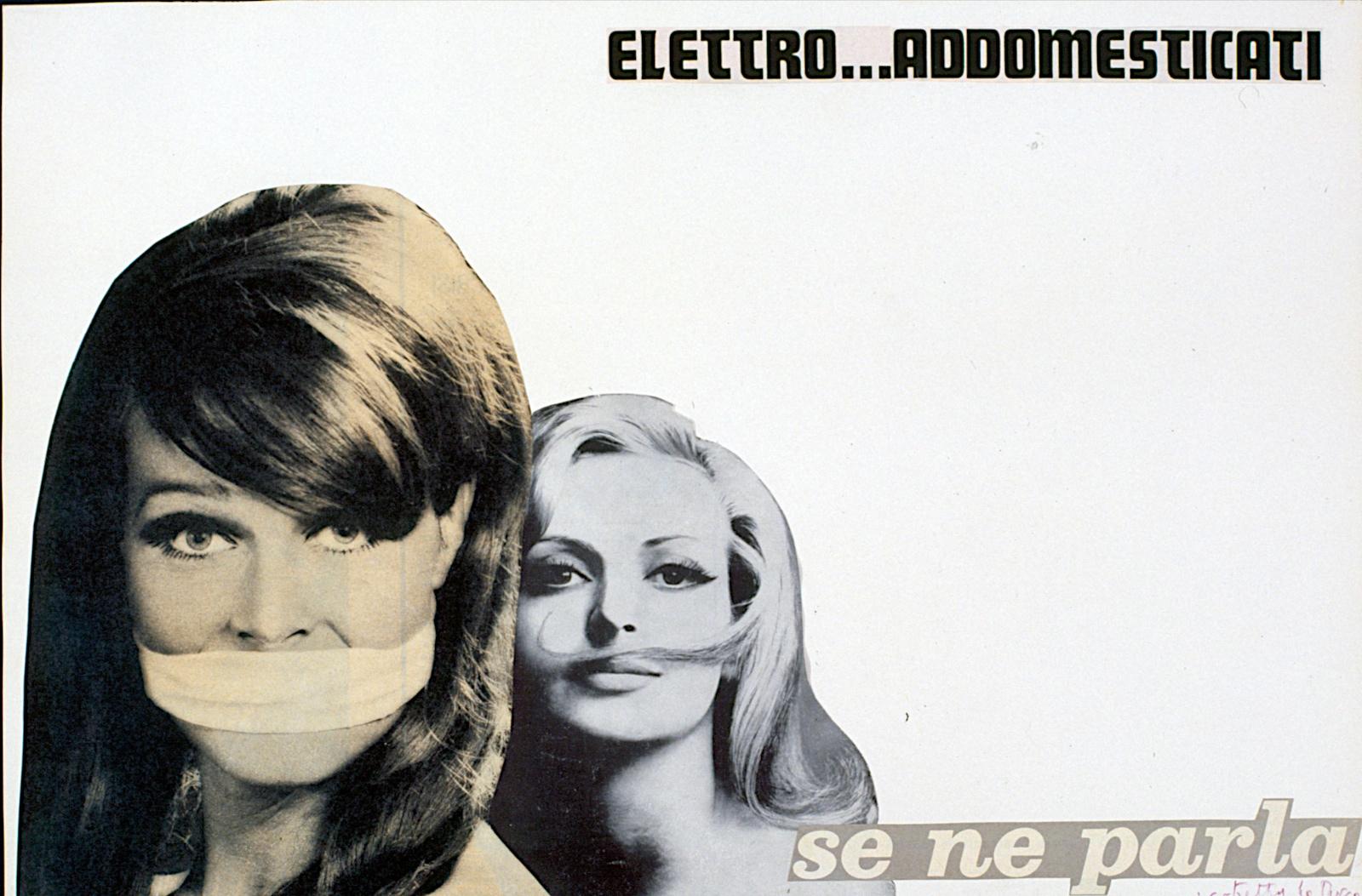 . elettro addomesticati 1965 .
