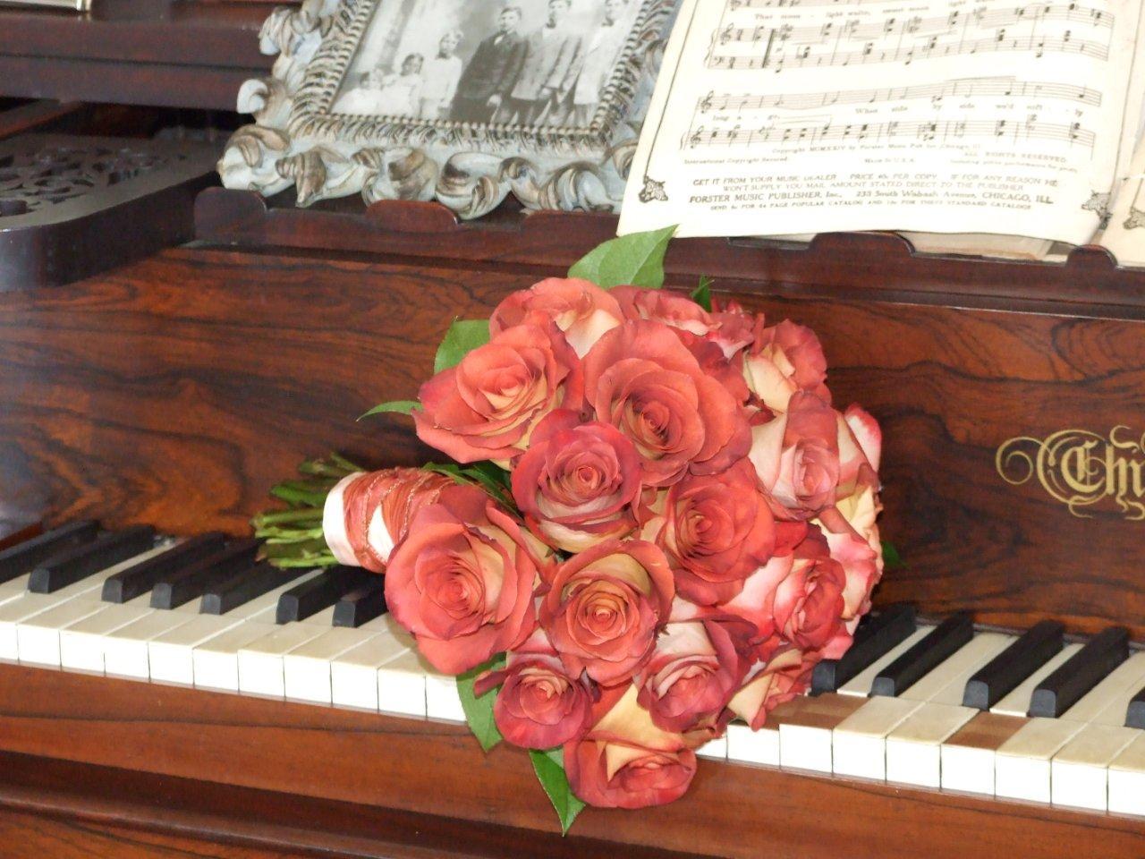 DSCF6311+Sweet+Magnolia+Flowers