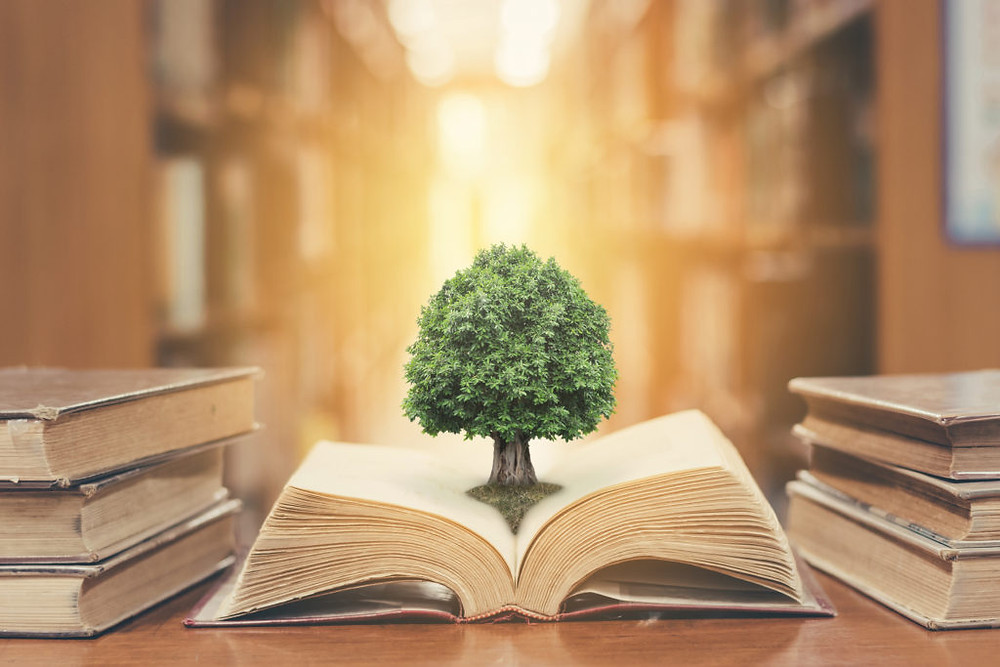 An fantasy image of a tree growing from the pages of an open book.