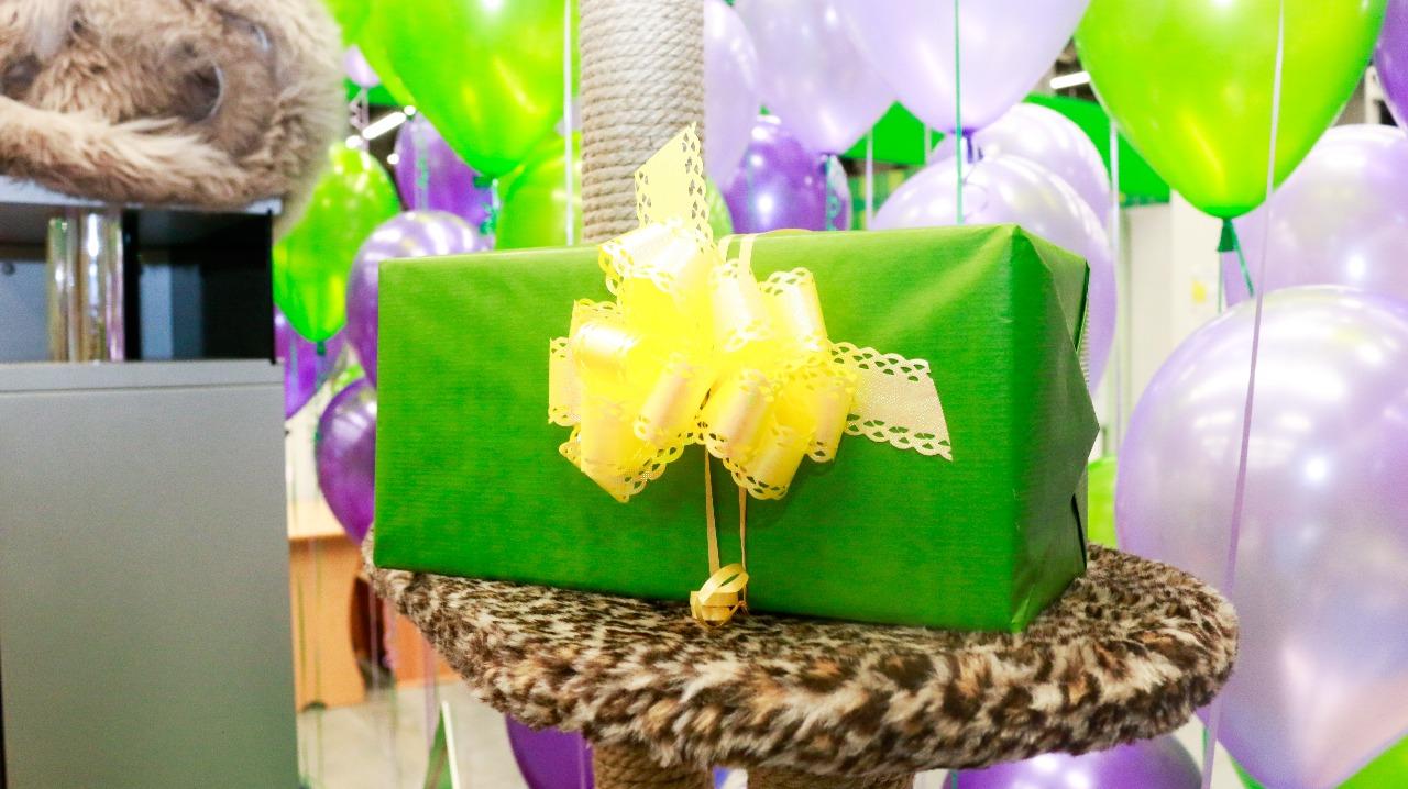 Парад Экодомных подарков