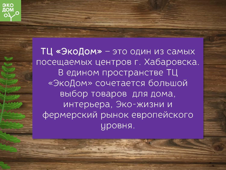 ЭкоДом-1_Страница_02