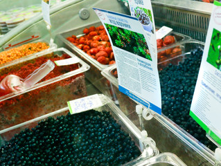 Дальневосточные ягоды появились на Экорынке