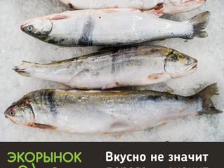 Рыбка для вашего ужина - свежий голец с Экорынка