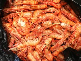 Свежие морепродукты от ДВ Ареал