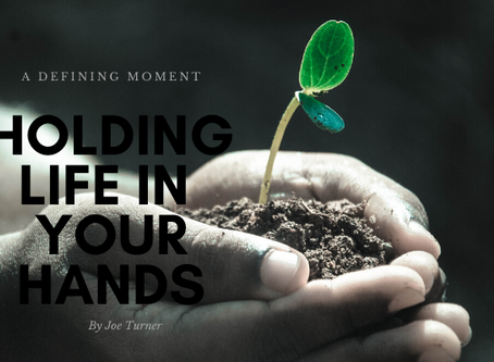 Holding Life in Your Hands