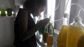 Une femme ou fille scientifique Malagasy est-ce un choix naturel ? Selon Razafimandimby Florinah