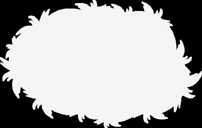 slide-fur-bg (1).png
