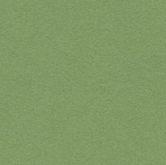 Bulletin Board - Baby Lettuce 2213