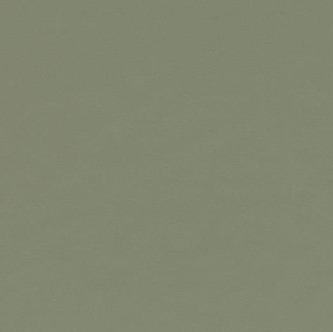 Desktop - Olive 4184