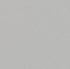 Laguna R10 - Silver Grey 181862