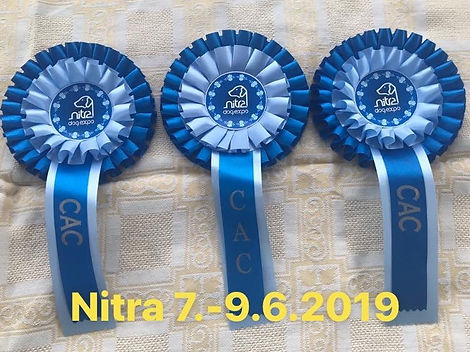 Nitra 6-2019-2.jpg