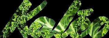 kaleo_logo (2).png