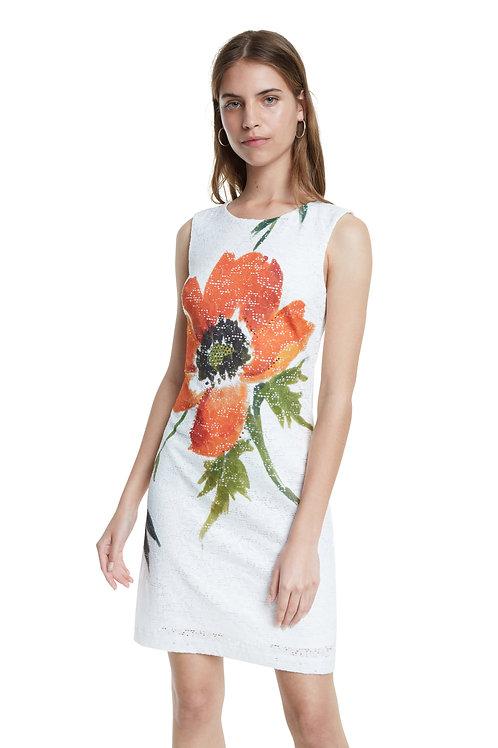 Desigual Eyre Dress