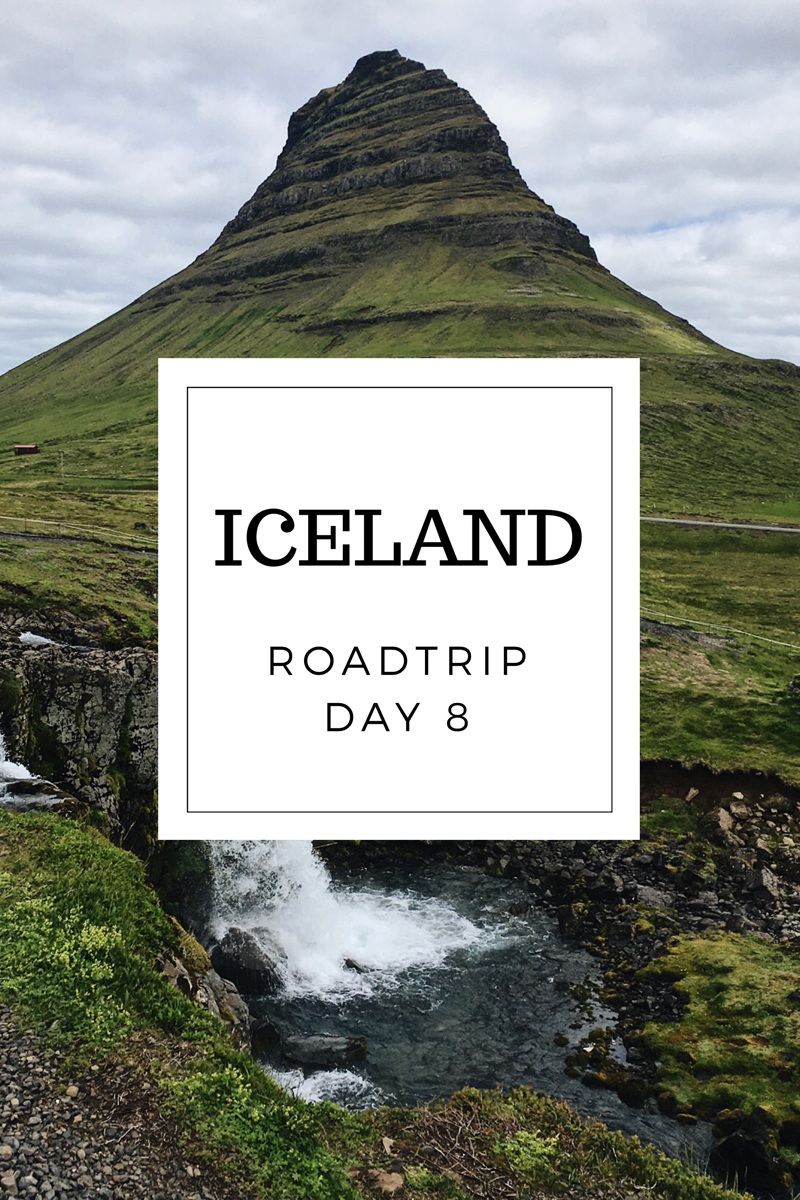 Too Many Plants Blog - Epic Road Trip in Iceland