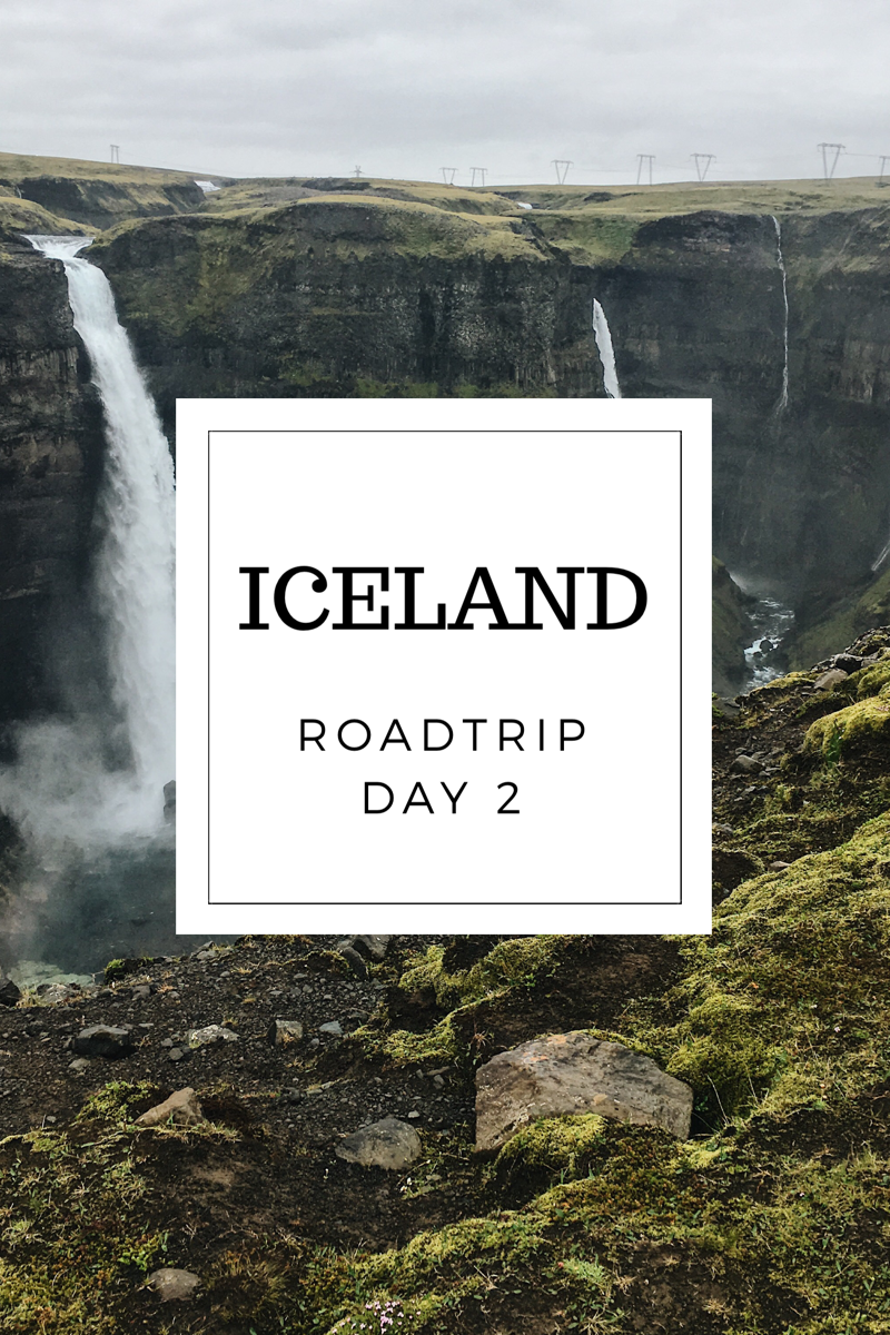 TooManyPlants Blog Iceland Road trip Day 2
