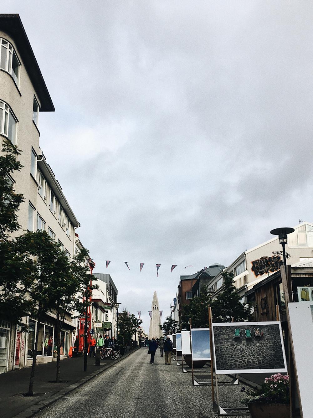 24 hours in Reykjavik - Too Many Plants Blog