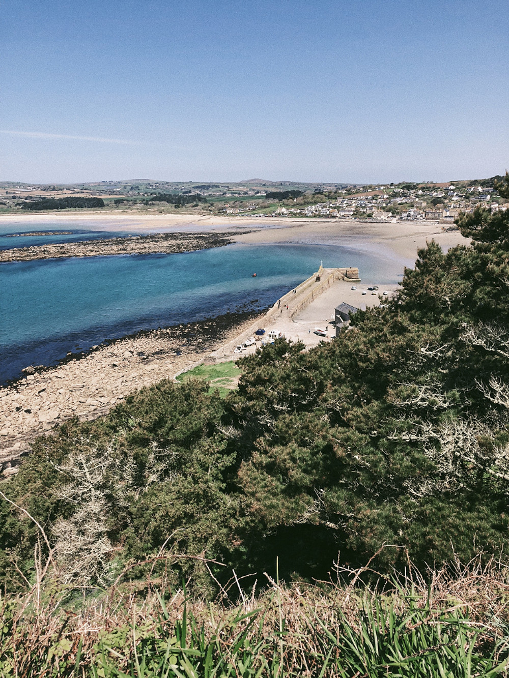 Road trip in Cornwall - Tate ST Ives. Too Many Plants Blog