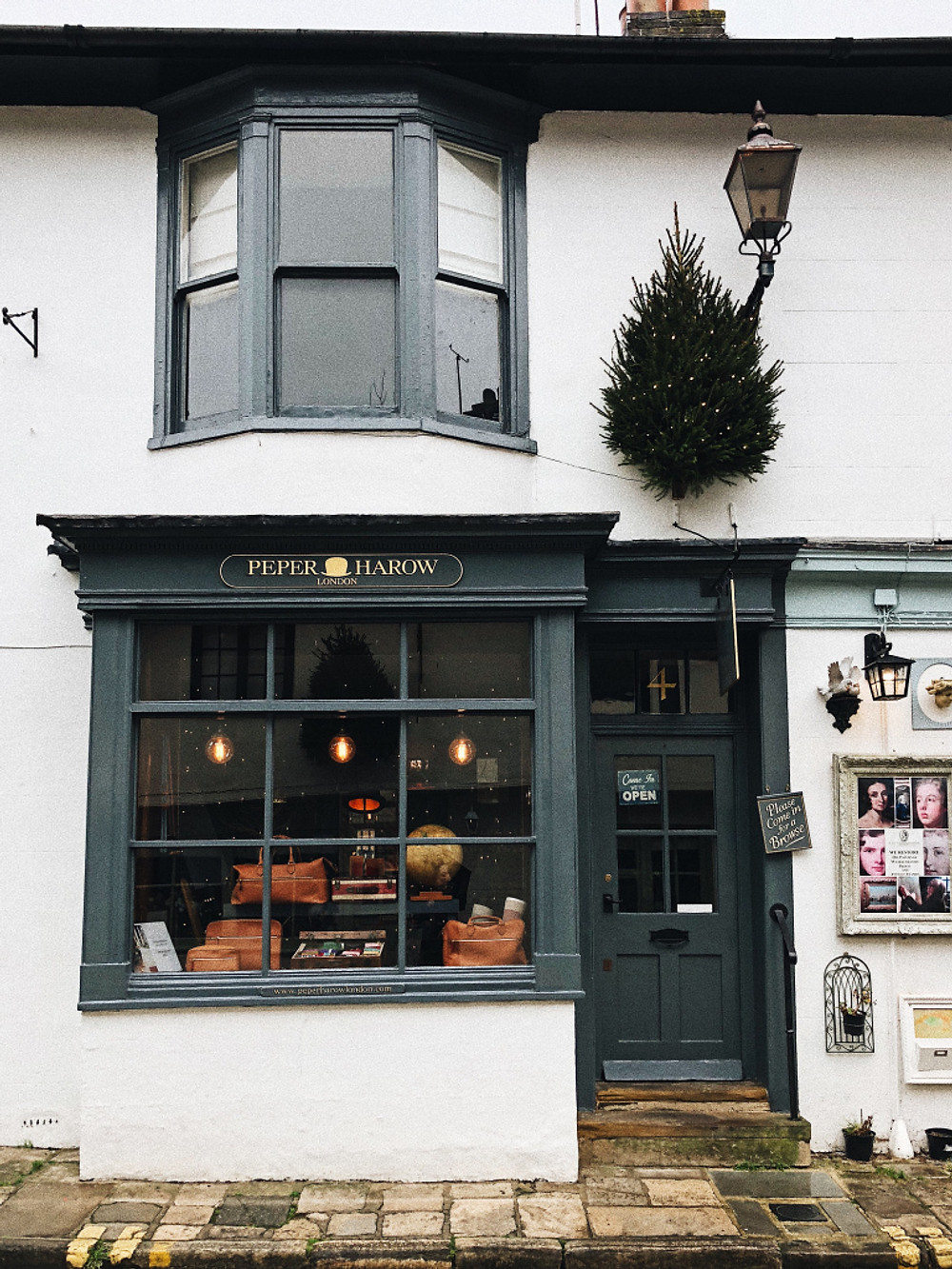 Arundel Guide - Too Many Plants Blog