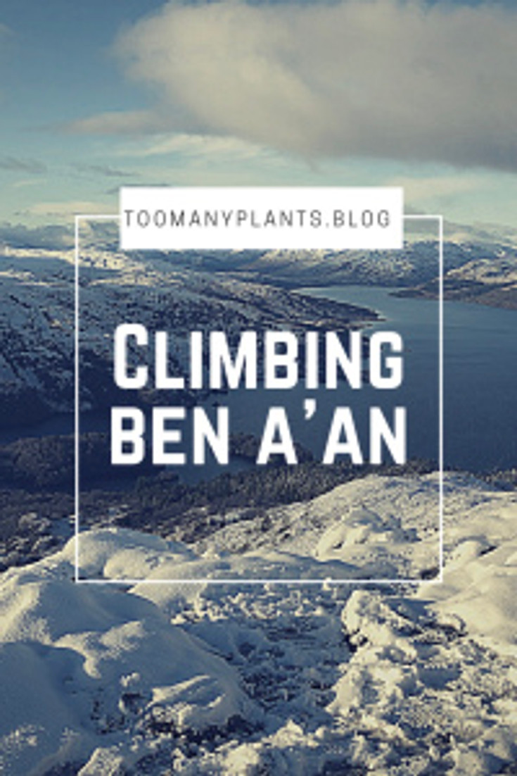 Climbing Ben A'an in Scotland - Too Many Plants Blog