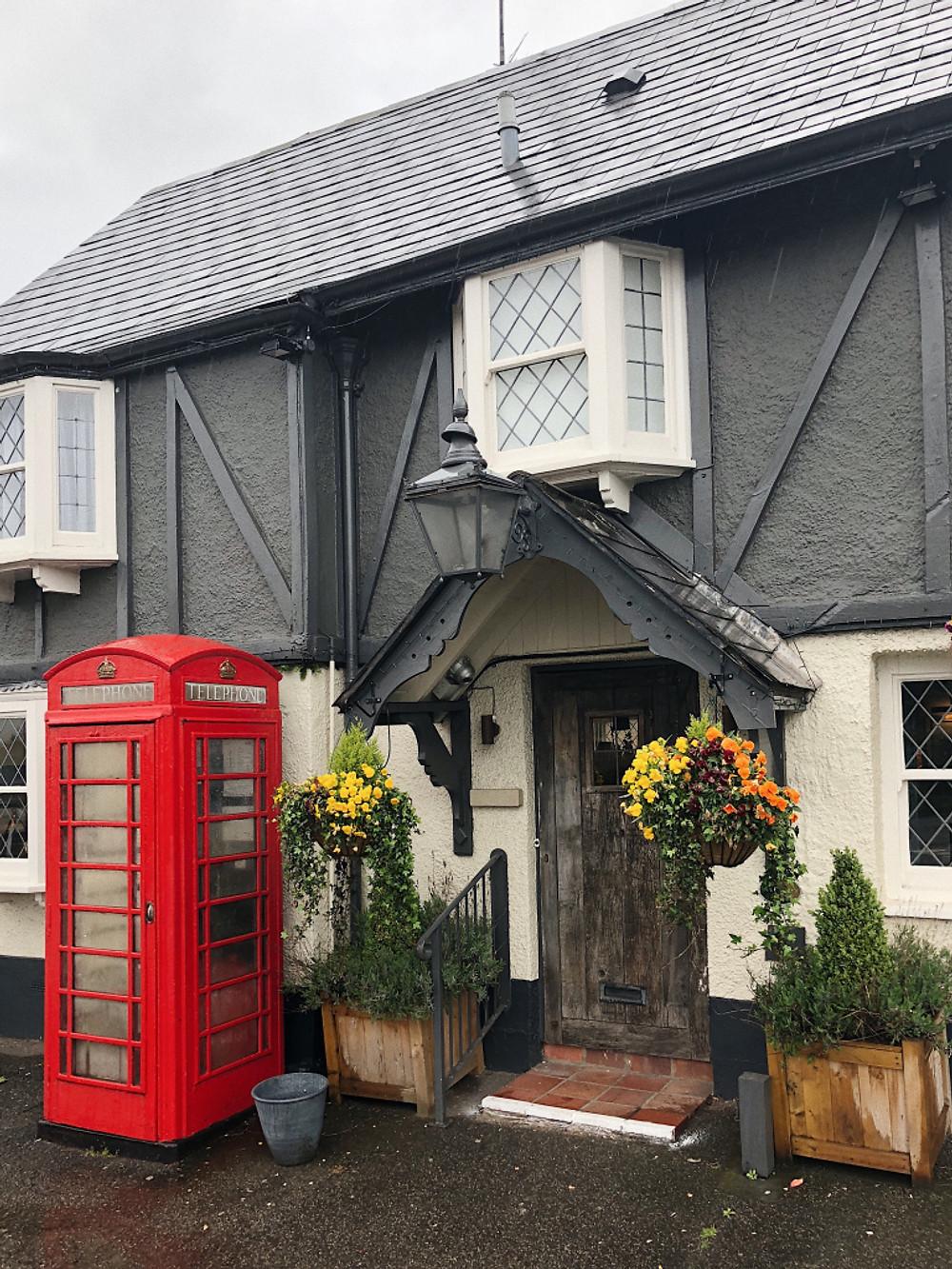 Too Many Plants Blog - Corwnall & Devon (Exeter)