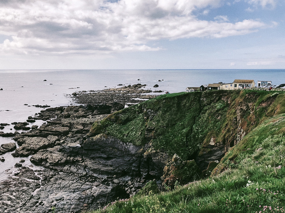Cornwall - Lizard's Point. Too Many Plants Blog