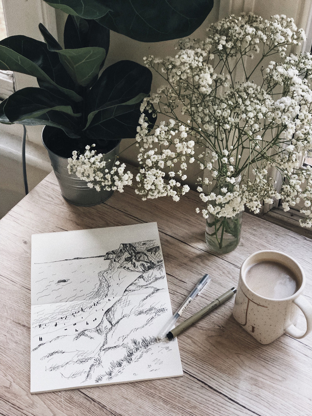 Too Many Plants Blog - Creativity and burnout