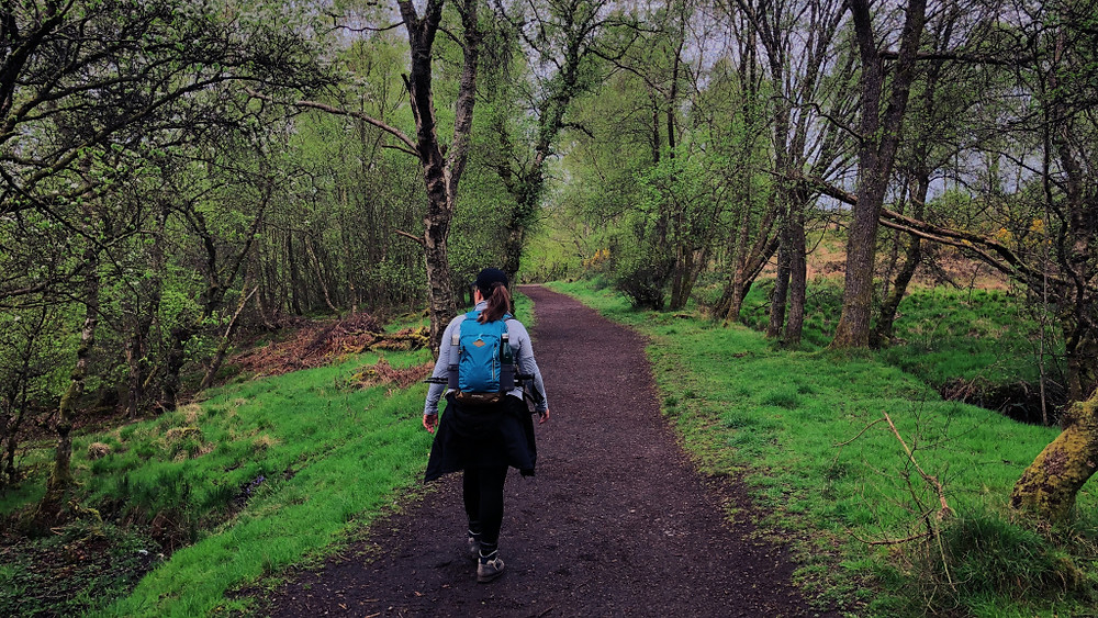 West Highland Way - Too Many Plants blogs