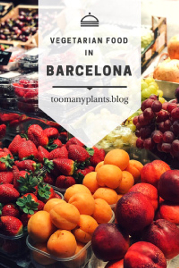 Vegetarian guide to Barcelona - Too Many Plants Blog