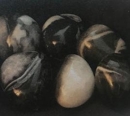 Shell Jaspis