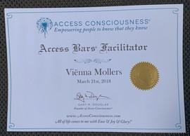 Access Bars Facilitator