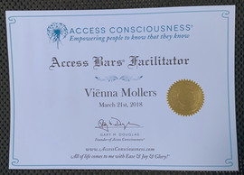 Access Bars Facilitator