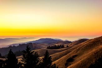 Bolinas Fairfax Ridge, Marin, CA