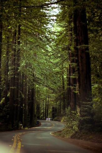 West Marin, CA