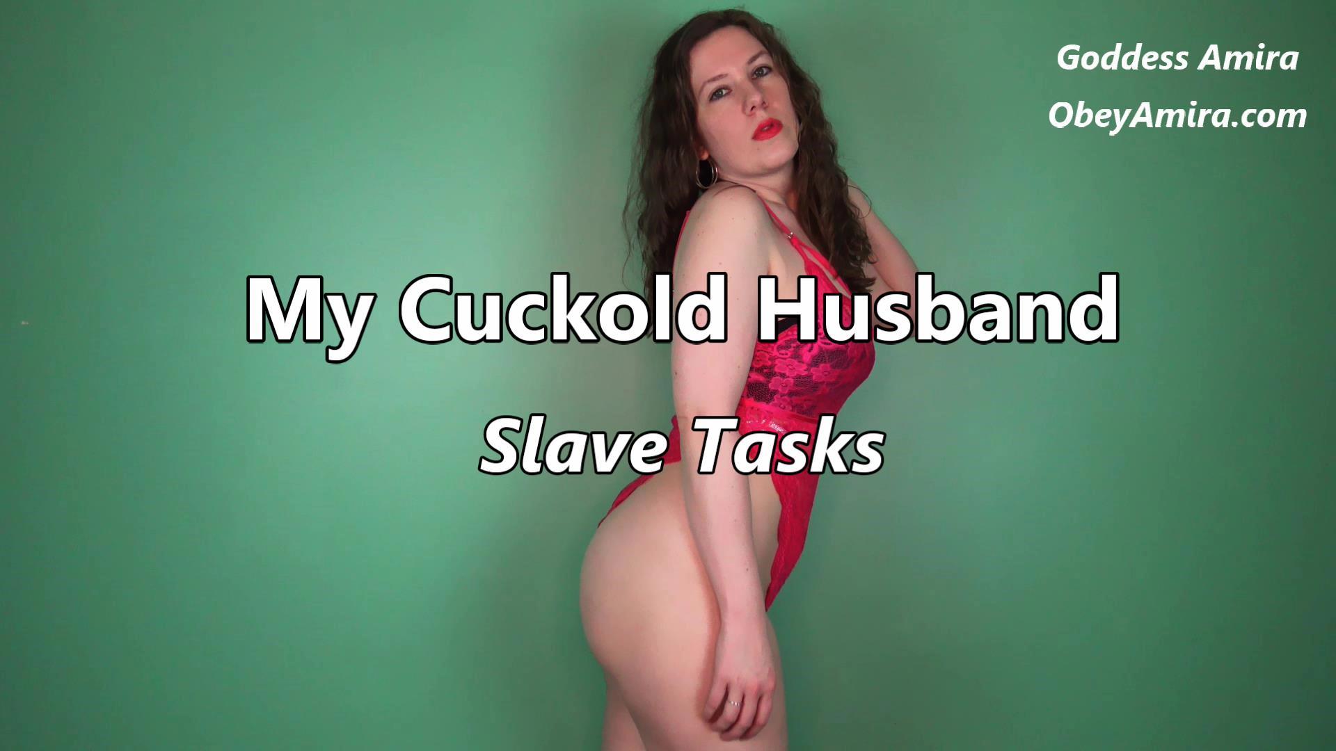 femdom cuckold slave tasks