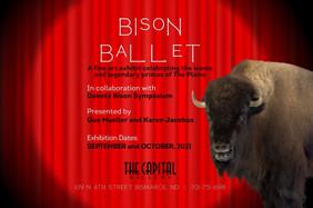 Bison Balet.jpg