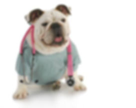 Vetco-veterinarias en mexicali.jpg