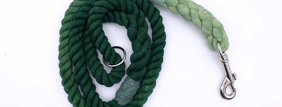 Green Ombre Cotton Dog Lead - Jolly Hound