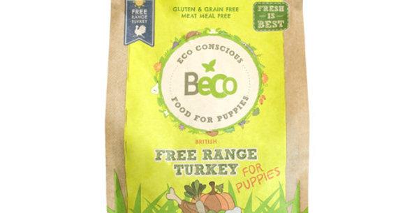 Free Range Turkey with Pumpkin & Spinach | Puppy Food 2KG - Beco