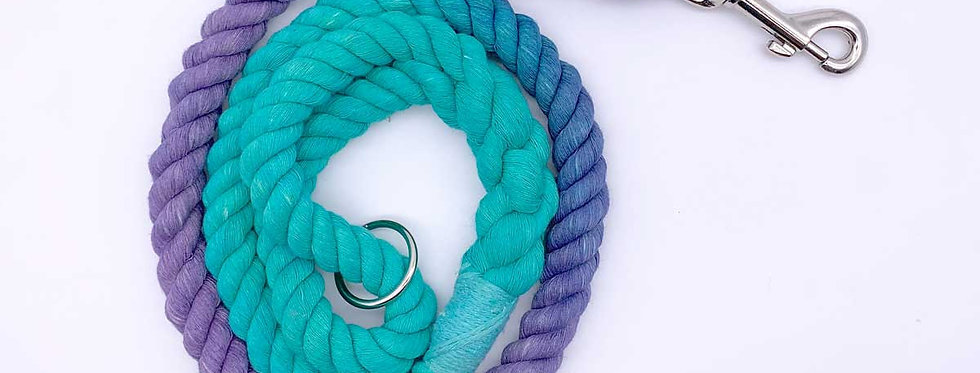 Purple/Turquoise Ombre Cotton Dog Lead - Jolly Hound
