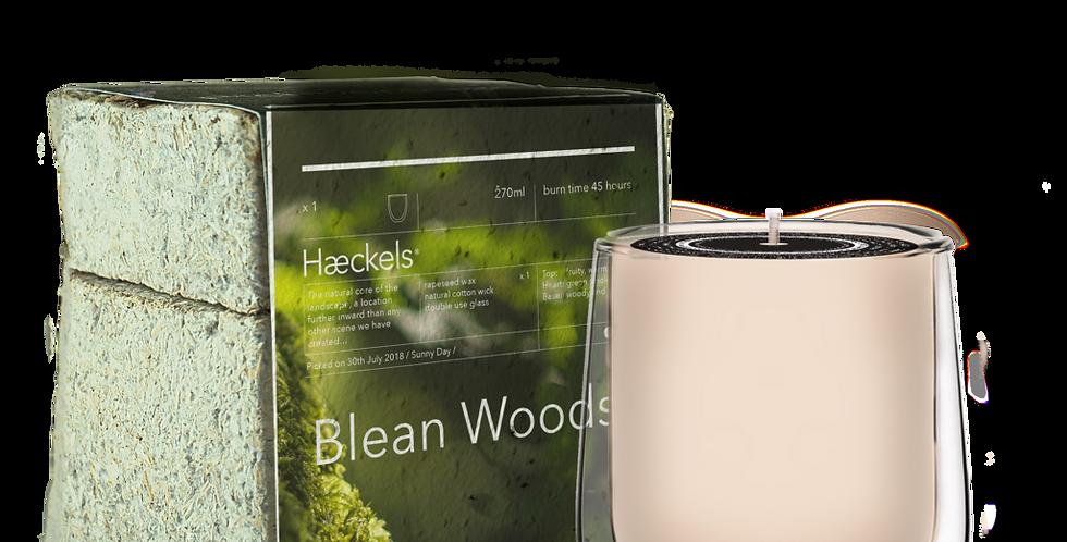 Haeckels Blean Woods Candle