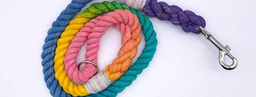 Rainbow Cotton Dog Lead - Jolly Hound