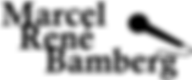 Logo bamberg gespreksleiding zwart black