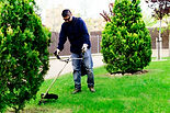 gardener mowing the lawn and tending the