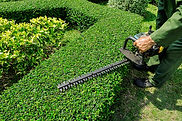 Workers were using electric mower for Ga
