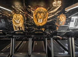 Gym_Lions.png