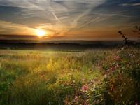 Summer Sunrise over Bolton