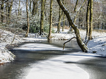 Snowy Smithills Country Park