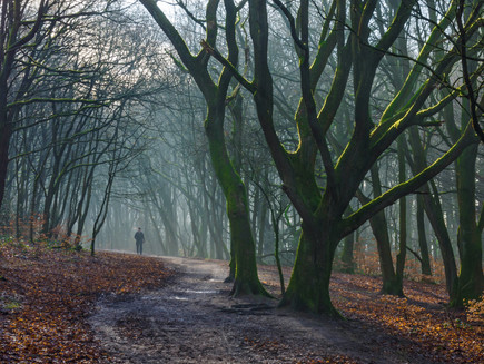 A Walk in the Woods, Rivington