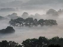 Misty Morning over Bolton